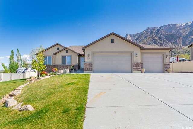 786 W 7425 S, Willard, UT 84340 (#1739694) :: Utah Real Estate