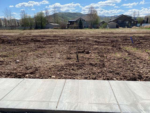 419 W 275 N #28, Morgan, UT 84050 (#1739771) :: Utah Dream Properties