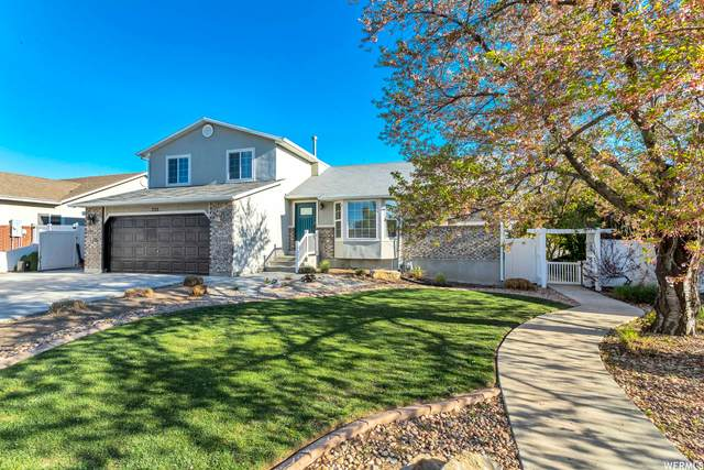 733 W Stephens Way, Draper, UT 84020 (#1739889) :: Pearson & Associates Real Estate