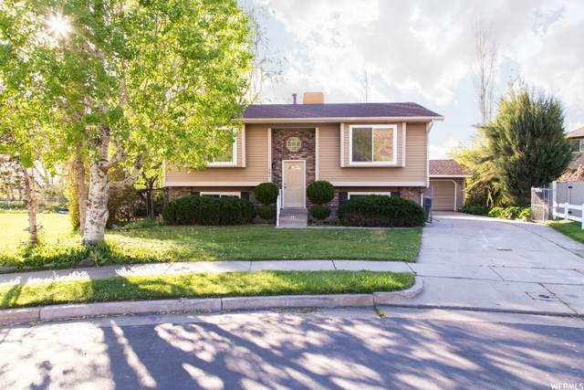 868 Hollie Ave, Farmington, UT 84025 (#1739925) :: Pearson & Associates Real Estate