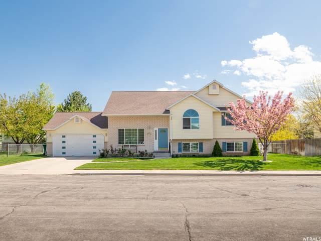 441 W 1010 N, Orem, UT 84057 (#1740070) :: Big Key Real Estate