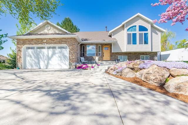 3865 River Dr, Riverdale, UT 84405 (#1740340) :: Big Key Real Estate