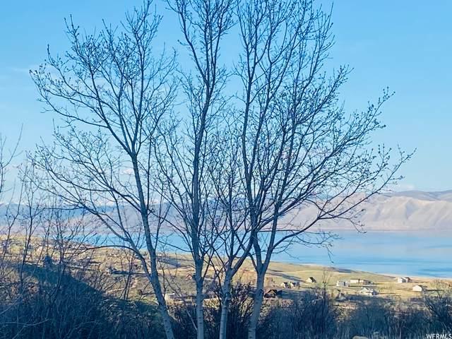 298 Coldsprings Dr, Fish Haven, ID 83287 (#1740382) :: Utah Dream Properties