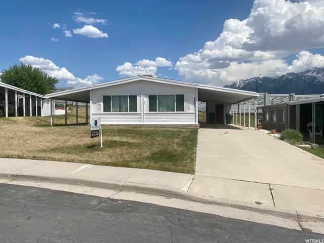 9805 S Alta View Ct, Sandy, UT 84070 (#1740466) :: McKay Realty