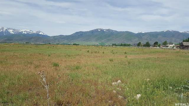 1350 S Industrial Pkwy, Heber City, UT 84032 (#1740520) :: The Perry Group