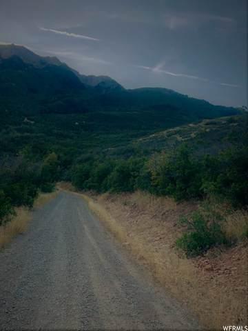 10 E Spring Mountain Dr N #10, Springville, UT 84663 (#1740784) :: goBE Realty
