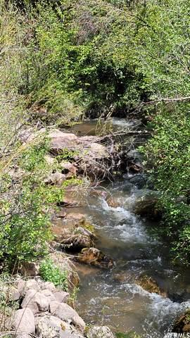 1000 Mill Creek Cyn, Moab, UT 84532 (#1740875) :: Black Diamond Realty
