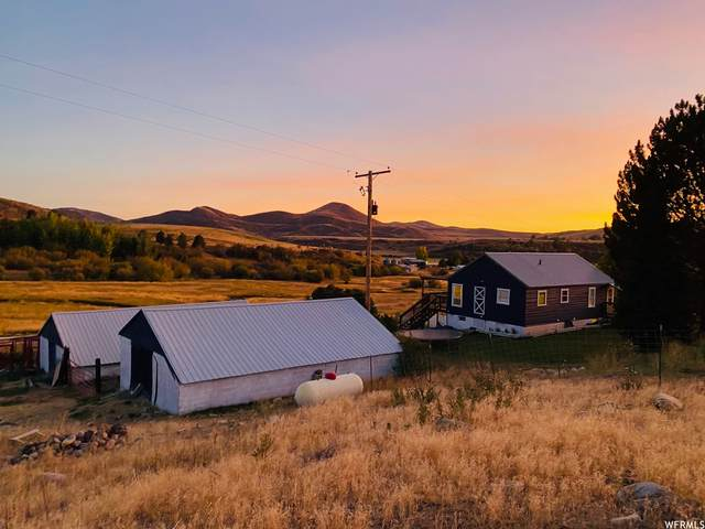 6914 E Williams Rd, Thatcher, ID 83283 (#1740976) :: The Perry Group