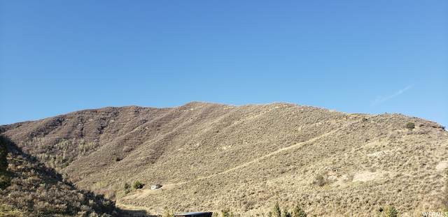 206 Echo Creek #206, Echo, UT 84024 (MLS #1741016) :: High Country Properties