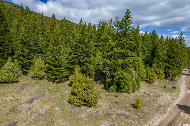 0 Smith Canyon Rd, Lava Hot Springs, ID 83246 (#1741272) :: The Lance Group