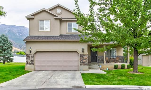 873 S Apple Grove Ln, Pleasant Grove, UT 84062 (#1741600) :: Utah Best Real Estate Team | Century 21 Everest