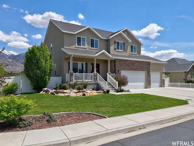 862 N 1220 W, Pleasant Grove, UT 84062 (#1741638) :: Utah Best Real Estate Team | Century 21 Everest