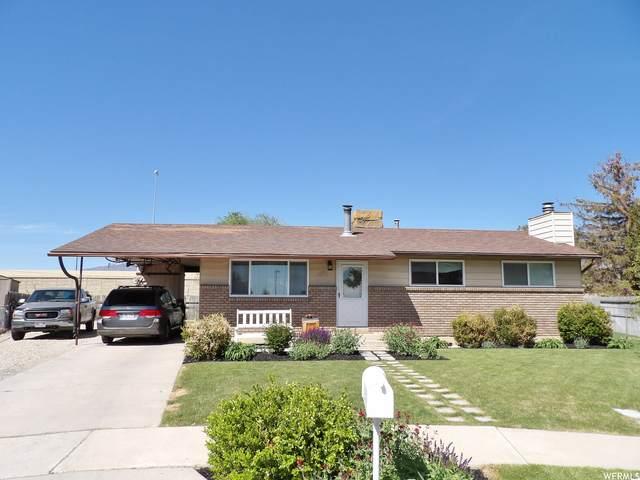 271 S Barratt Cir, American Fork, UT 84003 (#1741773) :: Gurr Real Estate