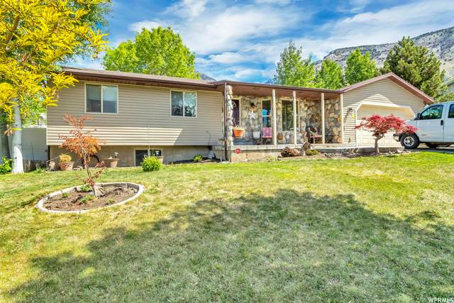 1175 E 200 N, Pleasant Grove, UT 84062 (#1741775) :: Black Diamond Realty
