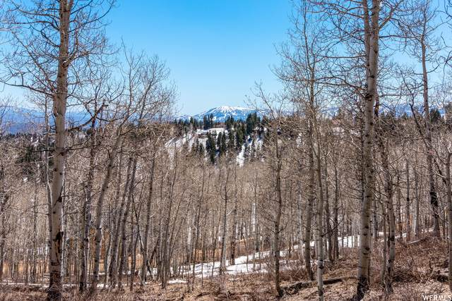 1975 W Willow Cir #13, Wanship, UT 84017 (MLS #1742030) :: High Country Properties