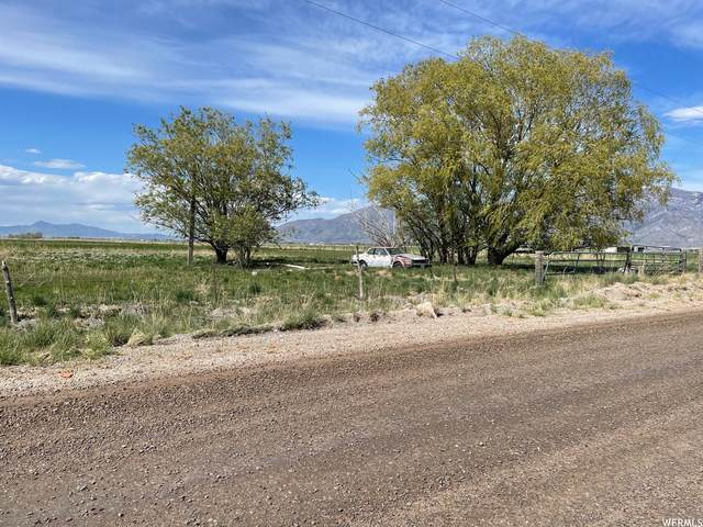 6350 W 4000 N, Corinne, UT 84307 (#1742145) :: Black Diamond Realty
