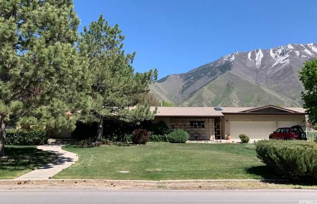 739 S 800 W, Mapleton, UT 84664 (MLS #1742196) :: Lawson Real Estate Team - Engel & Völkers