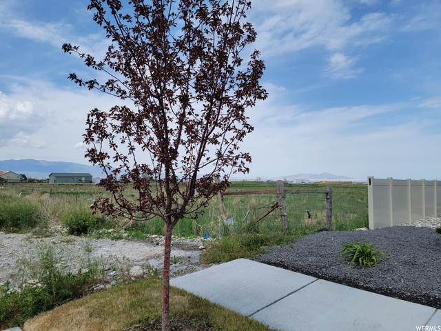 1000 North, Tooele, UT 84074 (#1742229) :: Black Diamond Realty