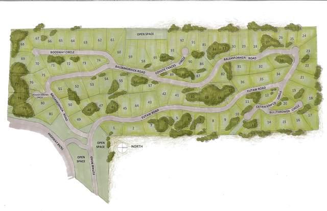 953 S Balsamorhiza Rd #81 #81, Garden City, UT 84028 (#1742249) :: Berkshire Hathaway HomeServices Elite Real Estate