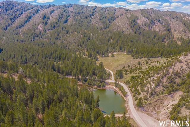 13755 S Racoon Dr, Lava Hot Springs, ID 83246 (#1742291) :: Colemere Realty Associates