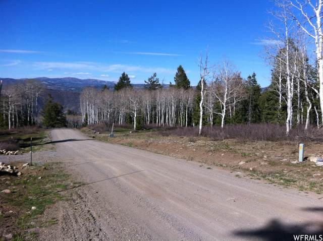 22282 Elk Meadow Dr, Spanish Fork, UT 84660 (#1742386) :: Utah Best Real Estate Team | Century 21 Everest