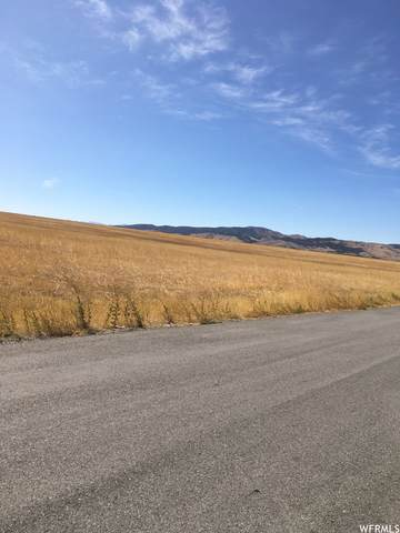 Address Not Published N/A, Nephi, UT 84648 (MLS #1742601) :: Summit Sotheby's International Realty