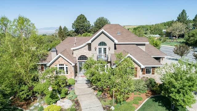 307 W 4300 N, Pleasant View, UT 84414 (#1742763) :: Real Broker LLC