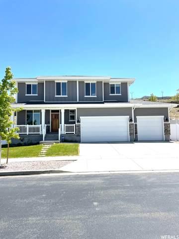 582 E Rockwell Vis, Draper, UT 84020 (#1742845) :: Bustos Real Estate | Keller Williams Utah Realtors