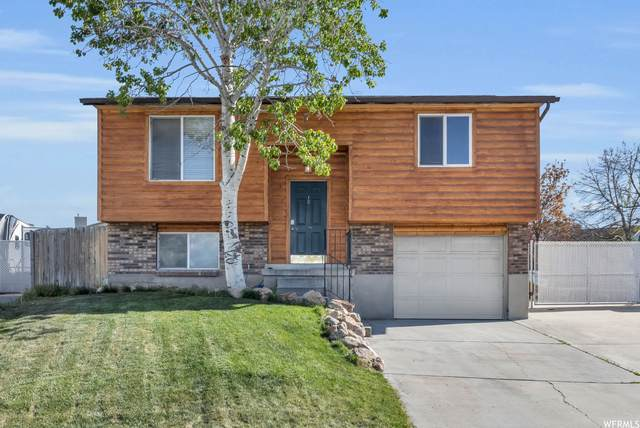 5592 S Crown Cir, Taylorsville, UT 84129 (#1742985) :: UVO Group | Realty One Group Signature