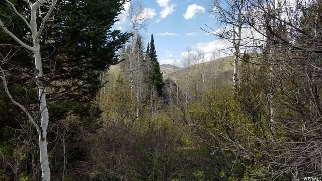 329 E Targhee Dr #329, Oakley, UT 84055 (#1742994) :: Utah Real Estate