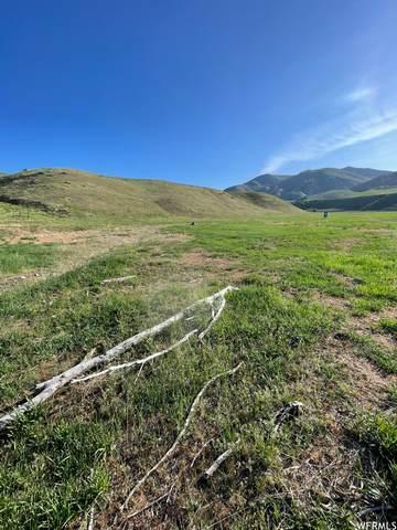 1275 E 8500 S, Paradise, UT 84328 (#1743035) :: Powder Mountain Realty