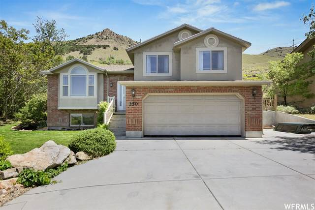 250 Sycamore Dr, Brigham City, UT 84302 (#1743533) :: UVO Group | Realty One Group Signature
