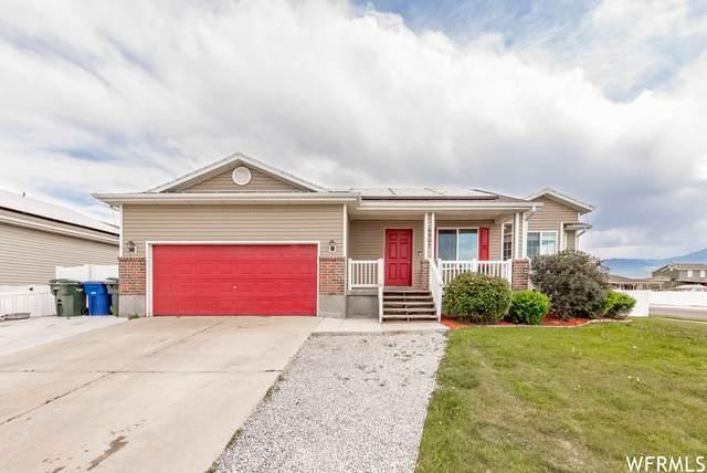 6907 W Labrador Cir, West Valley City, UT 84128 (#1743689) :: Utah Real Estate