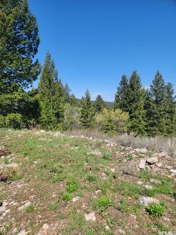 0 Bare Ground, Bancroft, ID 83217 (#1743770) :: Utah Real Estate