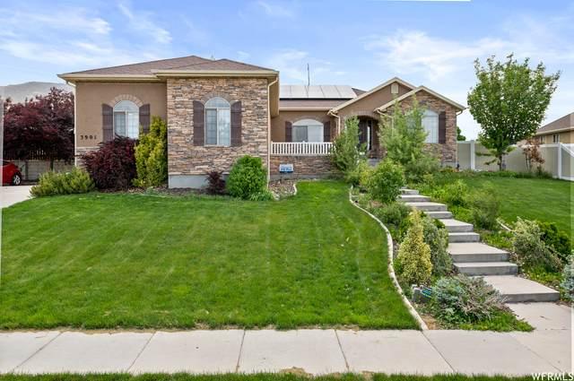 3901 S Panorama Dr, Saratoga Springs, UT 84045 (#1743787) :: McKay Realty