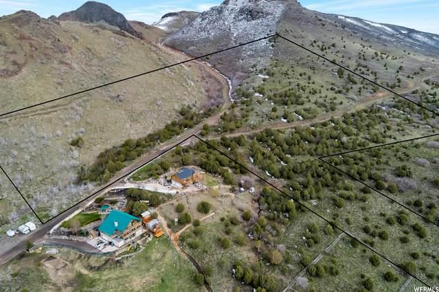 15223 S Rose Canyon Rd, Herriman, UT 84096 (#1743972) :: Powder Mountain Realty