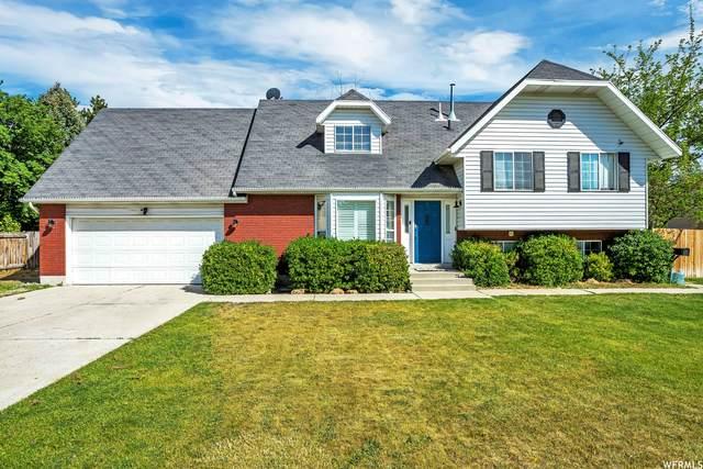 11817 S Hidden Valley Rd, Sandy, UT 84092 (#1744191) :: Gurr Real Estate