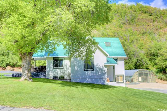 10686 S Covered Bridge Cyn, Spanish Fork, UT 84660 (#1744201) :: UVO Group | Realty One Group Signature