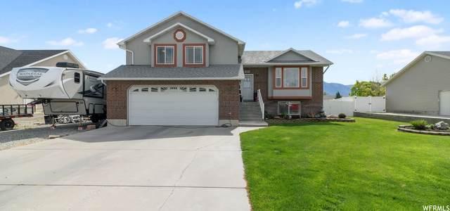 633 S 300 W, Garland, UT 84312 (#1744261) :: Utah Best Real Estate Team | Century 21 Everest