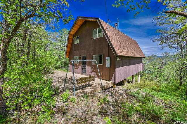 1132 N Birch Dr W #164, Midway, UT 84049 (MLS #1744423) :: High Country Properties