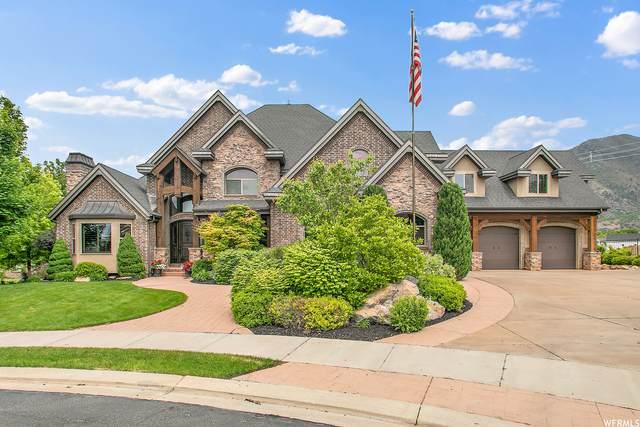 727 E Sunflower Cir S, Salem, UT 84653 (#1744617) :: Berkshire Hathaway HomeServices Elite Real Estate