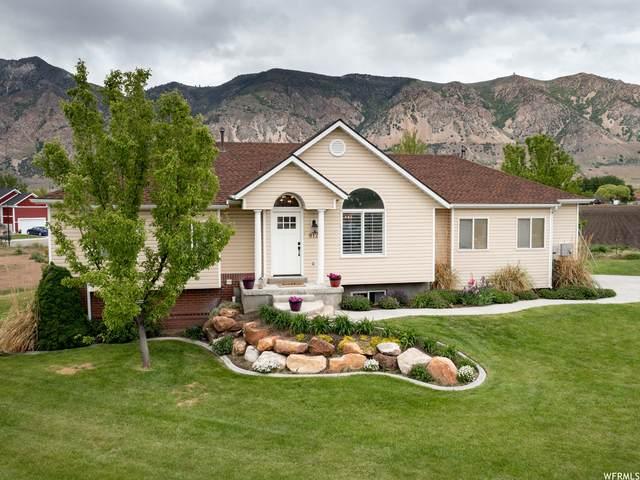 812 N 800 W, Brigham City, UT 84302 (#1744623) :: McKay Realty