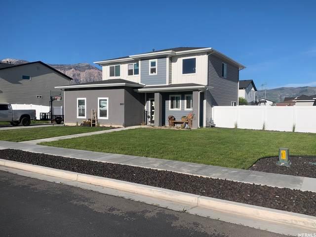 3136 N 3450 W, Plain City, UT 84404 (#1744834) :: Bustos Real Estate | Keller Williams Utah Realtors