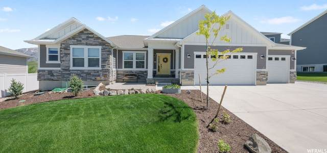 14817 Springtime Rd, Draper, UT 84020 (#1745027) :: UVO Group | Realty One Group Signature