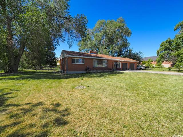 3113 W 11400 S, South Jordan, UT 84095 (#1745036) :: UVO Group | Realty One Group Signature