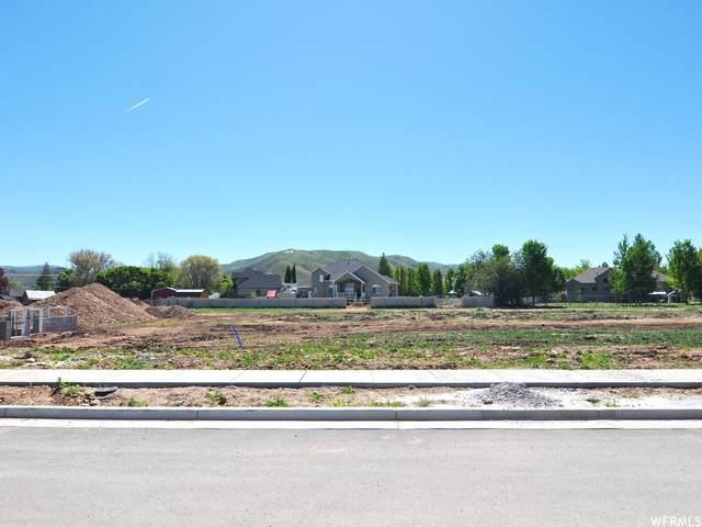 383 W 275 N #31, Morgan, UT 84050 (#1745062) :: Utah Dream Properties