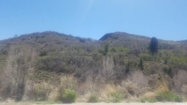 81 W Tollgate Canyon Rd, Wanship, UT 84017 (MLS #1745112) :: Summit Sotheby's International Realty
