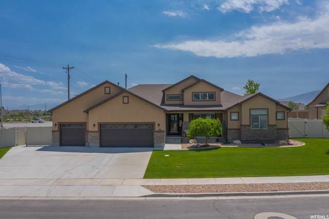 282 E 1130 S, Lehi, UT 84043 (#1745508) :: Berkshire Hathaway HomeServices Elite Real Estate