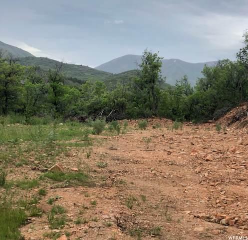 700 Hobble Creek Canyon Rd #7, Springville, UT 84663 (#1745643) :: McKay Realty