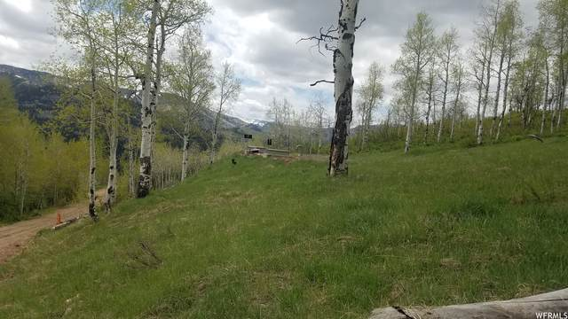 189 Canyon Rim Rd #189, Oakley, UT 84055 (MLS #1745876) :: High Country Properties